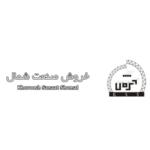 طراحی سایت پارمیدکس